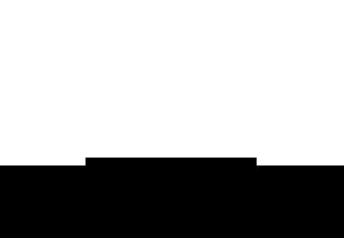 Googlushee